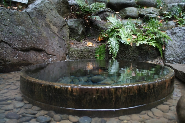 清正の井戸(清正井)