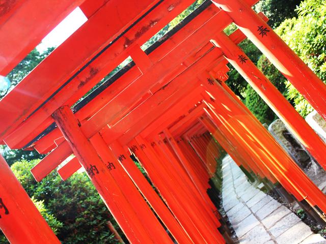 乙女稲荷神社の赤鳥居