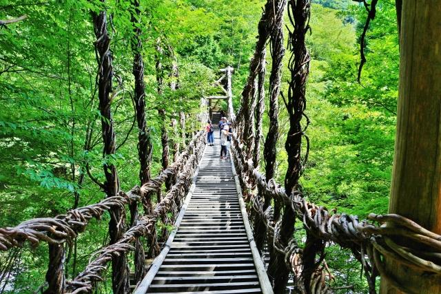 徳島県祖谷のかずら橋