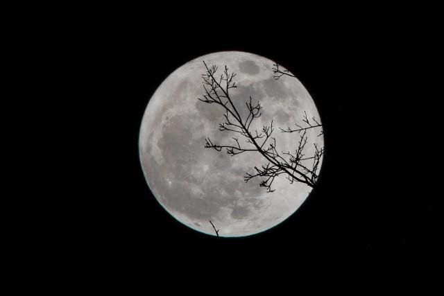 月星座で深層本質性格がわかる