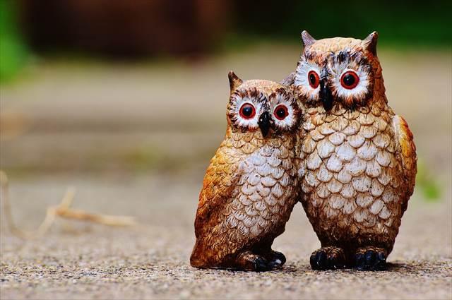 簡単に恋愛運アップを狙うならペアの鳥を置く